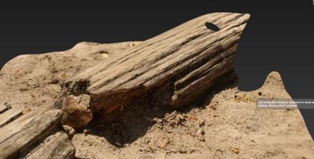 140314_woodsand